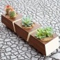 Cotemporary Planter Design Collection to Enhance Spring Style Home: Stunning Modern Wooden Indoor Planter In Sleek And Neat Design With Some Cactus No Need Big Space To Make Fresh Interior